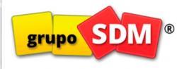 GRUPO SDM (Испания/Китай)