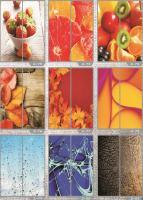 Рисунки ФЕНИКС стекло фотопечать (пример 16)