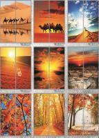 Рисунки ФЕНИКС стекло фотопечать (пример 24)