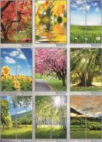 Рисунки ФЕНИКС стекло фотопечать (пример 25)
