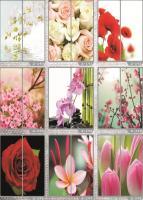 Рисунки ФЕНИКС стекло фотопечать (пример 29)