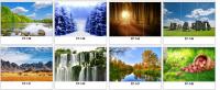 Рисунки НИКА зеркало фотопечать (пример 115)