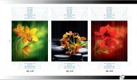Рисунки ВЛАБИ зеркало фотопечать 2Д (118-120)