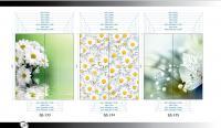 Рисунки ВЛАБИ зеркало фотопечать 2Д (133-135)