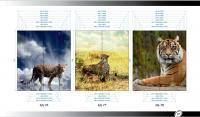 Рисунки ВЛАБИ зеркало фотопечать 2Д (76-78)