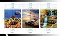 Рисунки ВЛАБИ зеркало фотопечать 2Д (97-99)