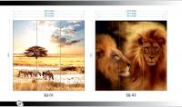 Рисунки ВЛАБИ зеркало фотопечать 3Д (01-02)