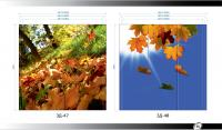 Рисунки ВЛАБИ зеркало фотопечать 3Д (49-50)