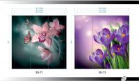 Рисунки ВЛАБИ зеркало фотопечать 3Д (71-72)