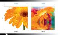Рисунки ВЛАБИ зеркало фотопечать 3Д (89-90)