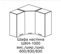Секция верхняя угловая ШКН-1000 АСПЕКТ